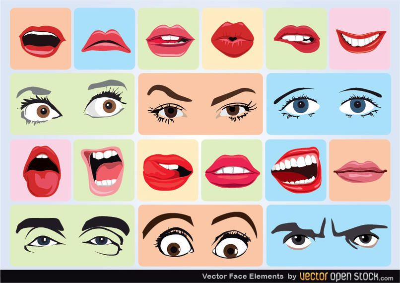 Elementos de la cara del vector