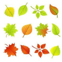 Gefallener Herbsturlaub Pack