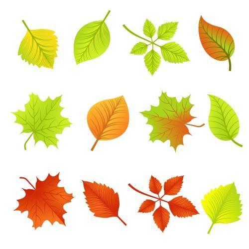 Fallen Autumn Leave Pack