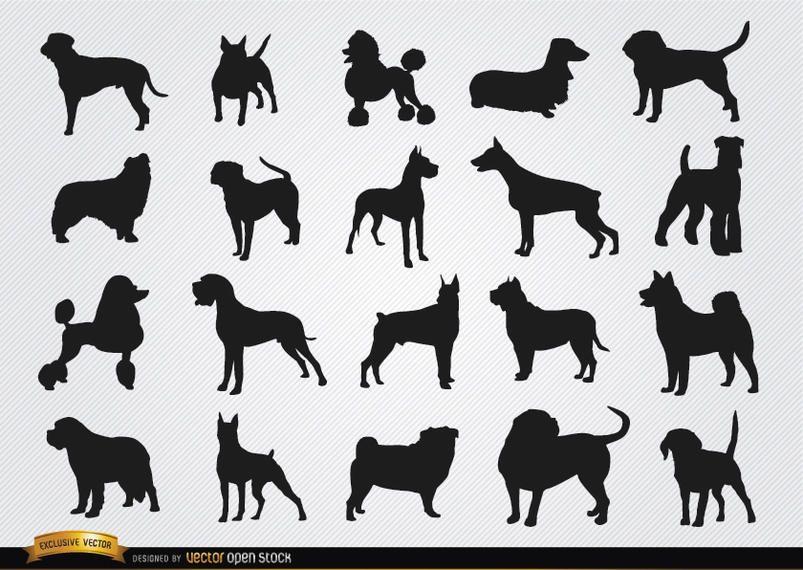 Razas de perros siluetas