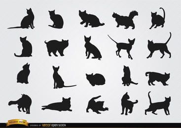 Cat breeds silhouettes set
