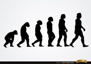 Silhuetas de evolução humana