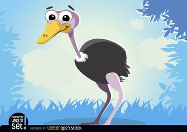Ostrich animal cartoon