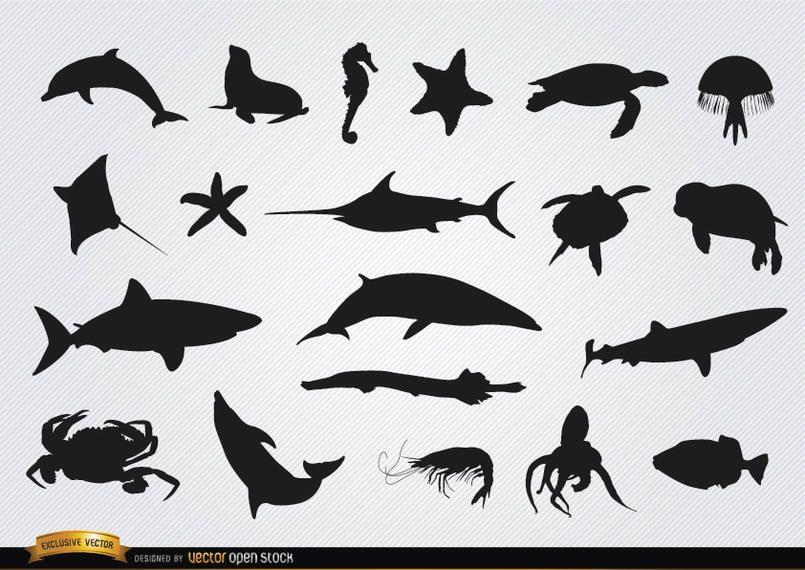 Conjunto de siluetas de animales marinos.