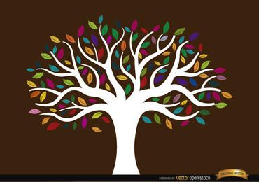 White trunk tree with colored leaves