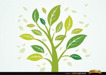 Pflanze mit Blättern im Wind