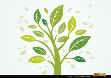 Planta con las hojas en el viento