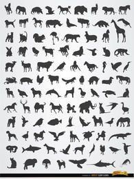 Silhouetten von Land-, Luft- und Wassertieren
