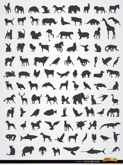 Terrestrial, aerial, and aquatic animal silhouettes