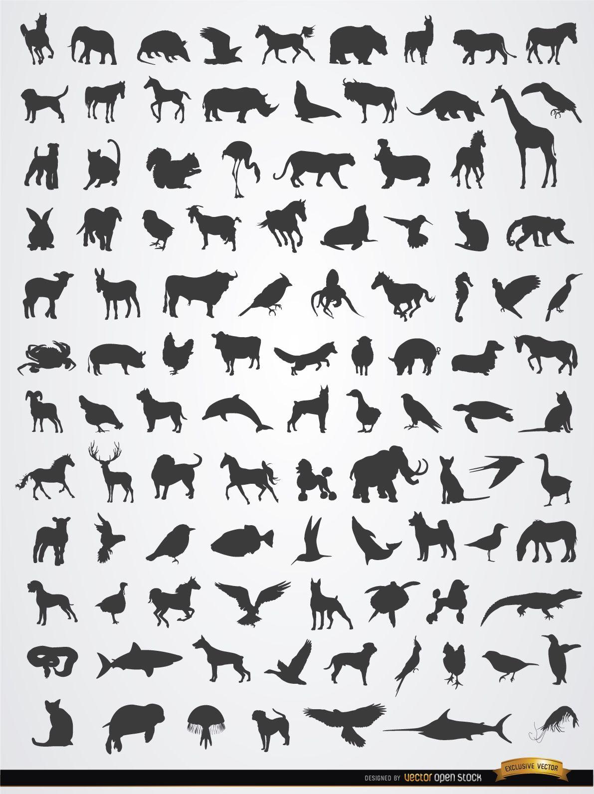 Terrestrial aerial and aquatic animal silhouettes