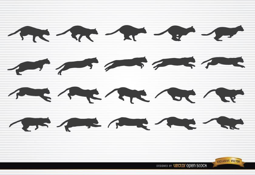 Animal gato em silhuetas de movimento