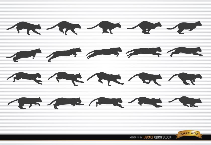 Cat animal in motion silhouettes