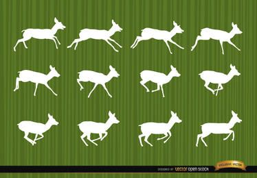 Deer running motion frames silhouettes