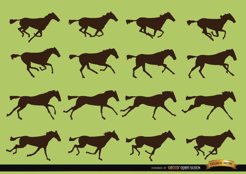 Horse galloping motion sequence silhouettes