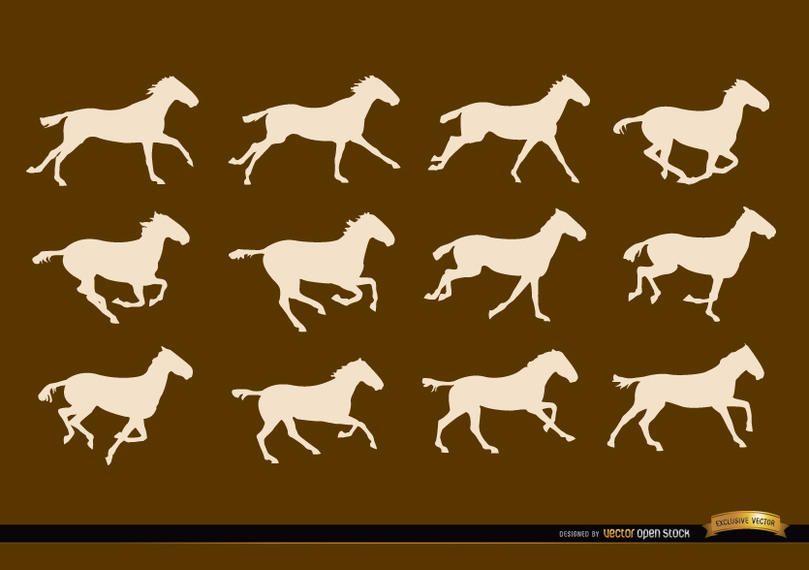 Cavalo, executando, quadros seqüência, silhuetas