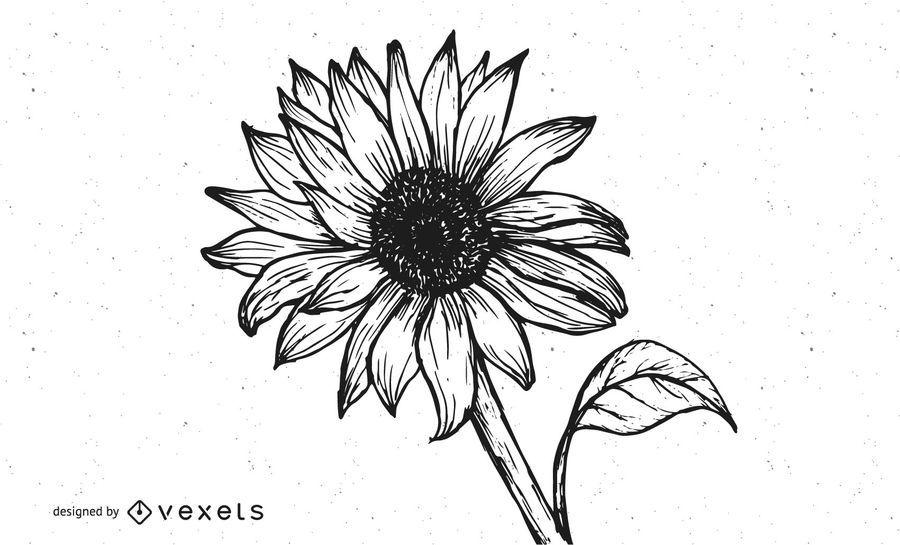 Grungy Hand Drawn Sunflower