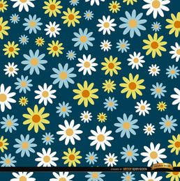 Daisies pattern background