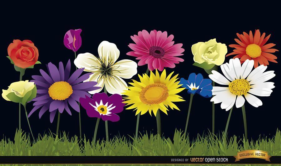 Várias flores no fundo da grama
