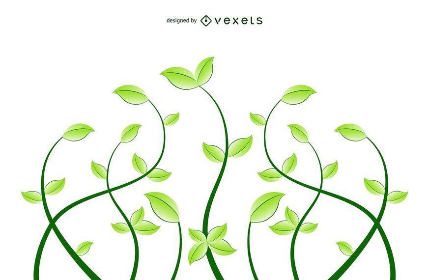 Plantas florales frescas