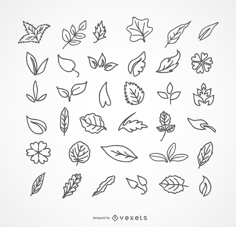 Leaves pack