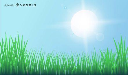 Gras mit Licht