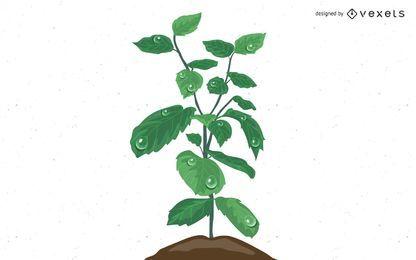 Planta crescendo a partir da água