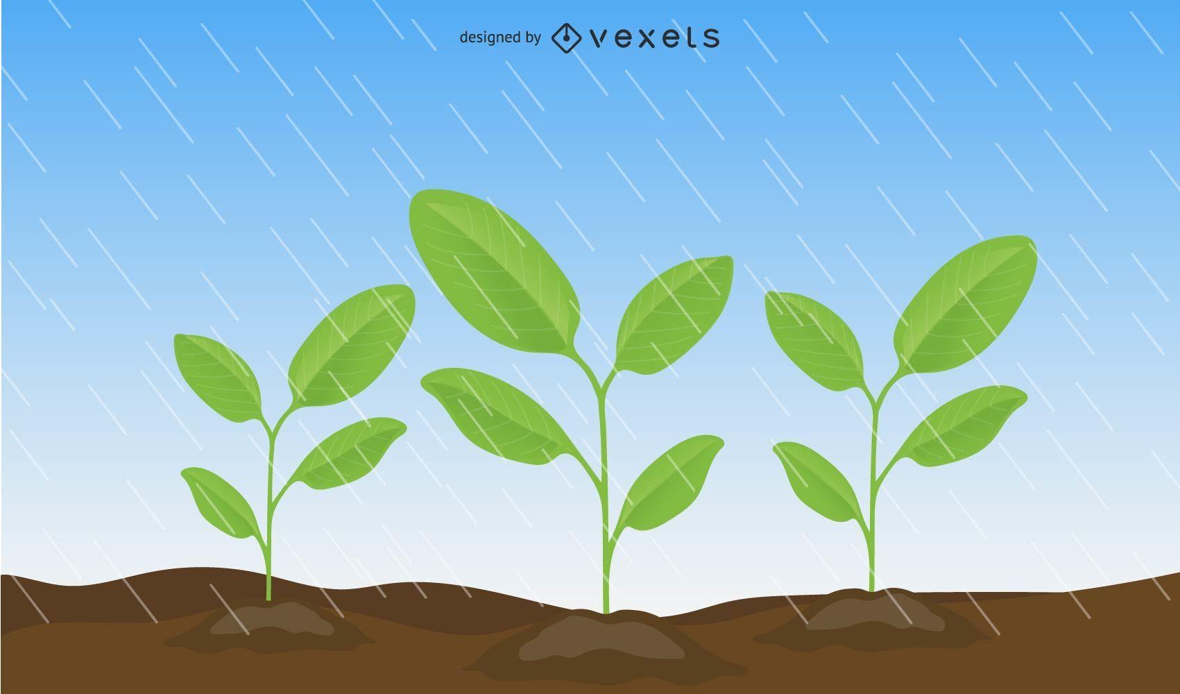 Folhas Vector