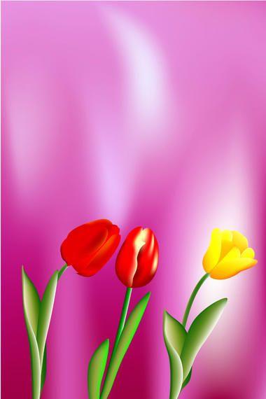 Beautiful vector tulips