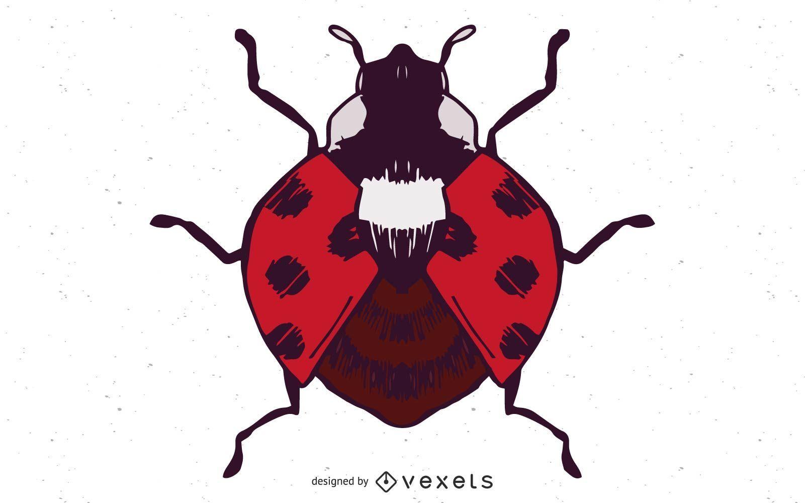 Ilustración de vector de mariquita