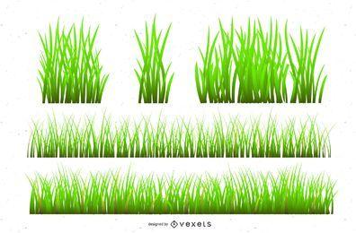 Conjunto de ilustración de hierba realista