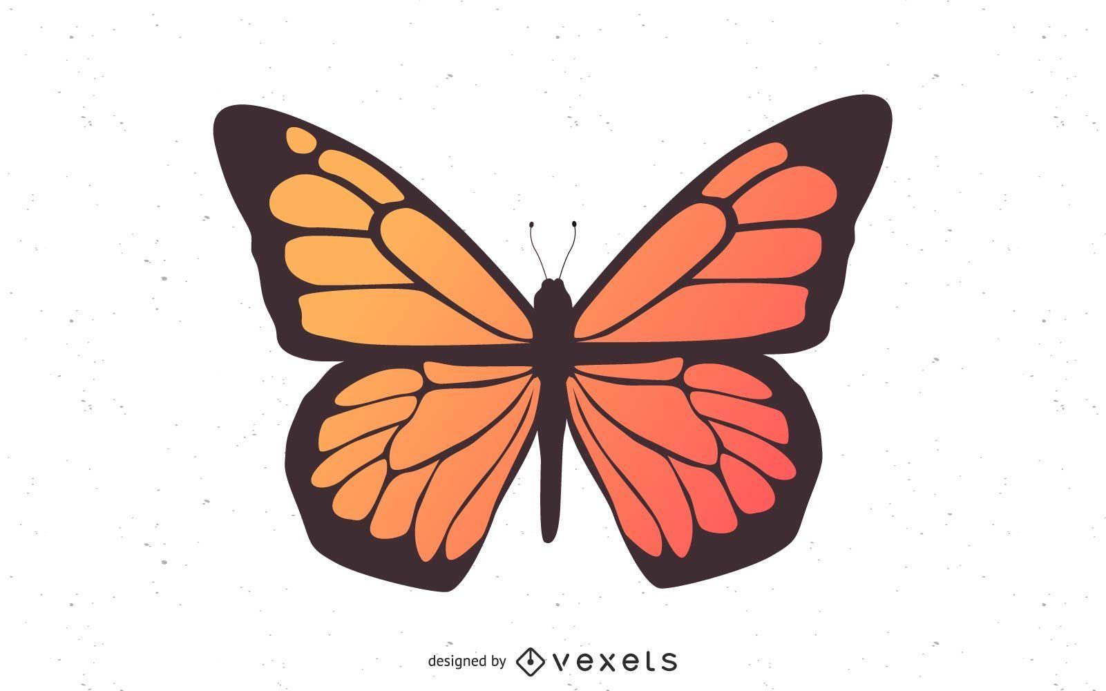 Mariposa del vector