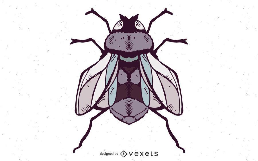 Vector Fly
