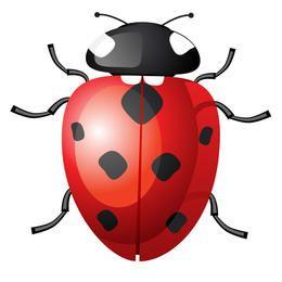 Vector Ladybug