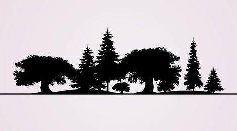 Silhuetas de árvore
