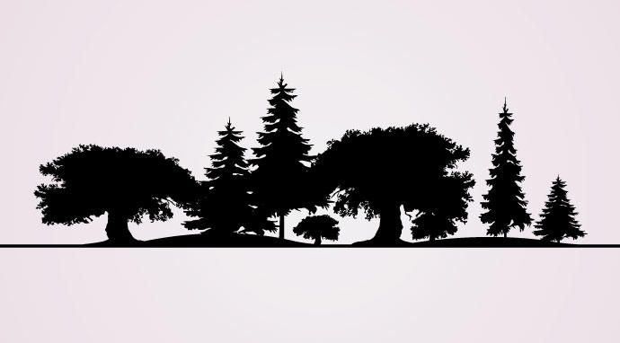 Baum-Silhouetten