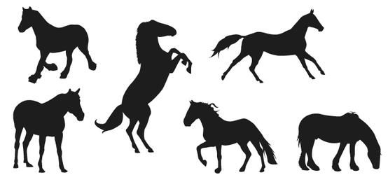 Silhuetas de cavalo