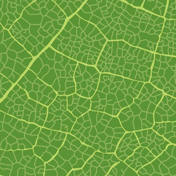 Green Leaf Texture Vector Download To get more templates about posters,flyers,brochures,card,mockup,logo,video,sound,ppt,word,please visit pikbest.com. green leaf texture vector download