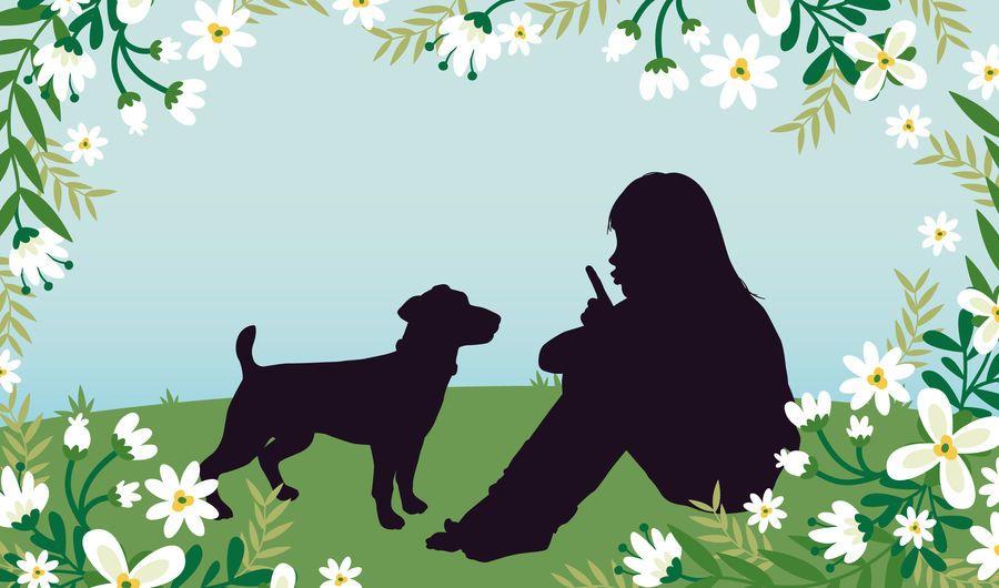 Menina, com, cão, gramado, campo