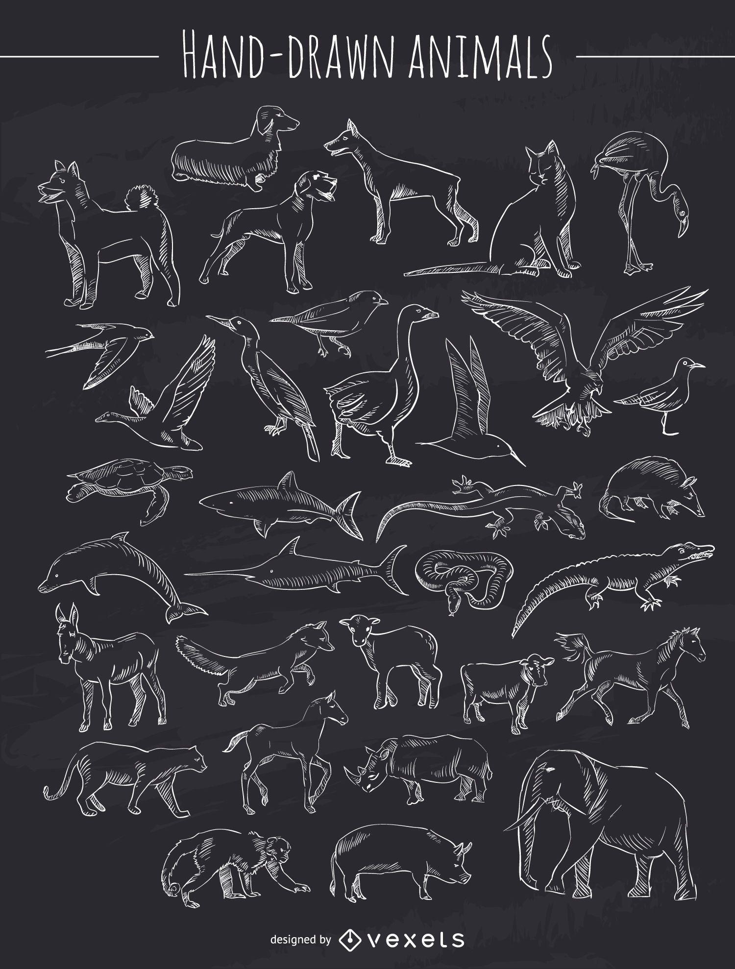 Colección de animales dibujados a mano de tiza