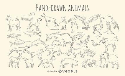 Conjunto de animais desenhados à mão