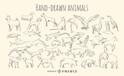 Conjunto de animales dibujados a mano.