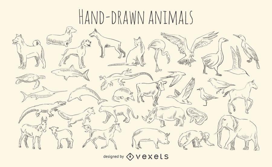 Hand-drawn animals set