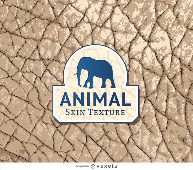 Textura de la piel del elefante