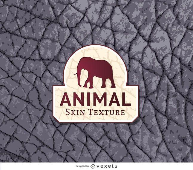 Textura de la piel del elefante gris