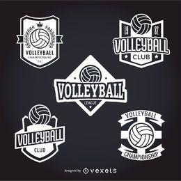 Conjunto de pegatinas de voleibol