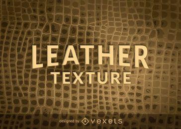 Reptilhaut Leder Textur