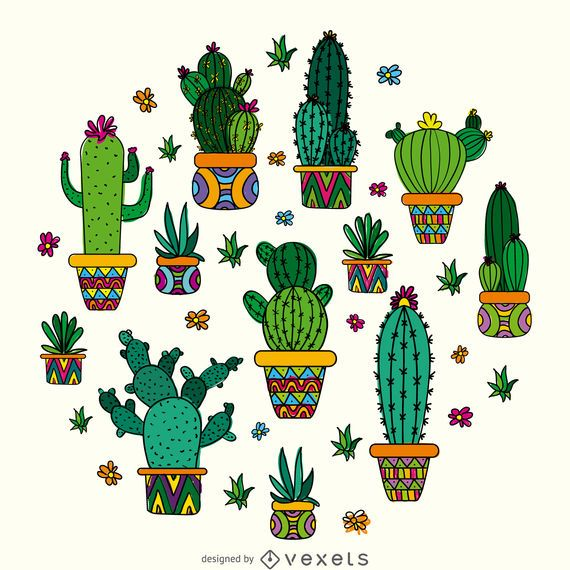 Cactus drawing design