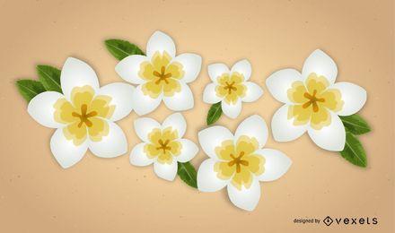 Plumeria-Vektor-Blumen