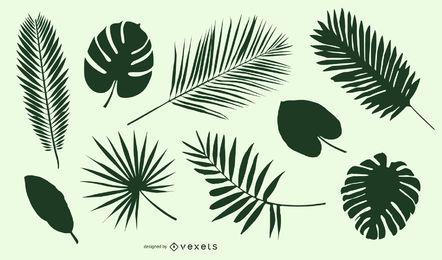 Conjunto de silueta de hojas y hojas.