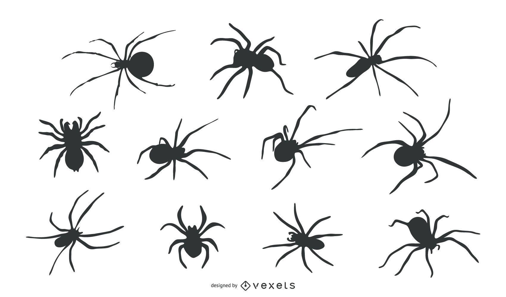 Spider Animal Silhouette Set